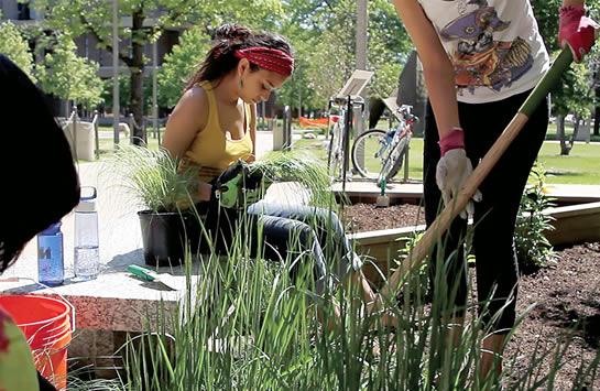 Students working in the Heritage Garden