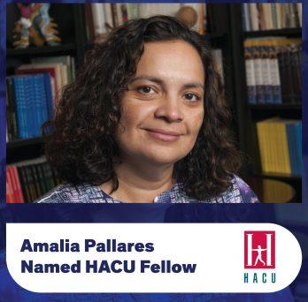 Amalia Pallares Named HACU Fellow
