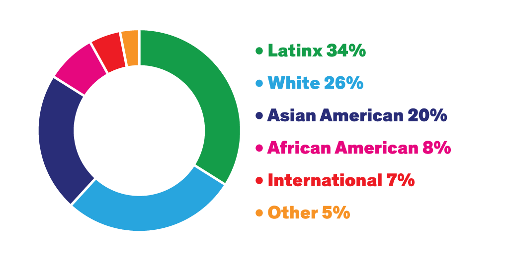 Graph with various colors showing Latinx 34% White 26% Asian American 20% African American 8% International 7% Other 5%